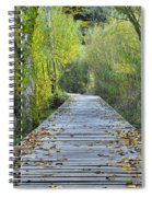 Wooden Path Spiral Notebook