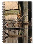 Woodies Spiral Notebook