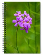 Woodland Dreaming Spiral Notebook