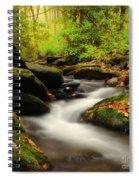 Woodland Fantasies Spiral Notebook