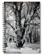 Woodland Fluff Spiral Notebook