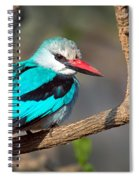 Woodland Kingfisher Halcyon Spiral Notebook