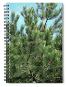Woodland Pines Spiral Notebook