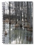 Woodland Stillness  Spiral Notebook