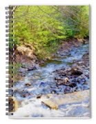 Woodland Stream And Waterfall, Hickory Run, Pocono Mountains Spiral Notebook