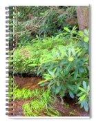 Woodland Stream Forest Interior Spiral Notebook