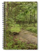 Woodland Strem Spiral Notebook