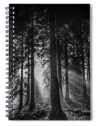 Woodland Walks Silver Rays B/w Spiral Notebook