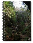 Woodlands Spiral Notebook