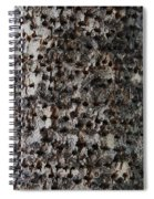 Woodpecker Holes In The Apple Tree Spiral Notebook