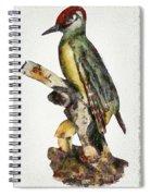 Woodpecker Red Heads Spiral Notebook