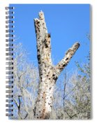 Woodpecker Was Here Spiral Notebook