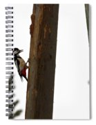 Woodpecker Workshop  Spiral Notebook