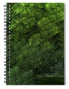 Woods And Stream Spiral Notebook