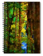 Woods Approach To Lake Spiral Notebook