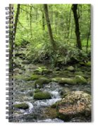 Woods - Creek Spiral Notebook