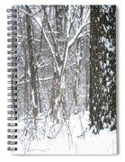 Woods In Winter Spiral Notebook