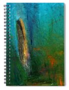 Woods Scene 052010 Spiral Notebook