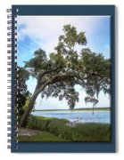 Woodstorks At Oak Grove Island Spiral Notebook