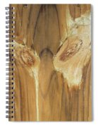 Woody The Clown Spiral Notebook