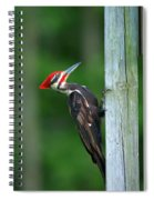 Woody Woodpecker Spiral Notebook