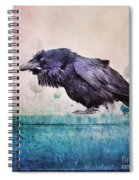 Words Of A Raven Spiral Notebook