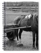 Work Horse And Cart Spiral Notebook