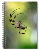 Working The Web Spiral Notebook
