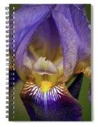 World Inside Of Iris Spiral Notebook