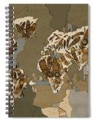 World Map Mandala Feathers 4 Spiral Notebook