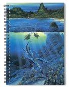 Worlds Away Ted Nasmith Spiral Notebook