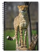 World's Fastest Land Animal Spiral Notebook