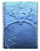 Worldwide Web Spiral Notebook