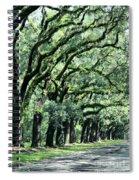 Wormsloe Georgia No. 7668 1 Of 3 Set Color Spiral Notebook