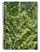 Wormwood Spiral Notebook