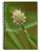 Wound Up Spiral Notebook