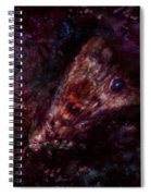 Wounded Miracle Spiral Notebook