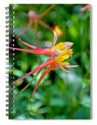Wp Floral Study 3 2014 Spiral Notebook