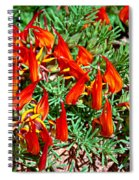 Wp Floral Study 6 2014 Spiral Notebook
