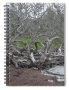 Wrack And Driftwood Spiral Notebook