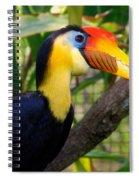 Wrinkled Hornbill Spiral Notebook