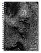 Wrinkles Spiral Notebook