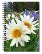 Wyethia And Camas Spiral Notebook