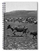 Wyoming: Cowboys, C1890 Spiral Notebook