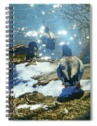 Wyoming Morning At The River Spiral Notebook