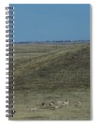 Wyoming Pronghorns Spiral Notebook