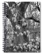 Wysteria Tree In Black And White Spiral Notebook