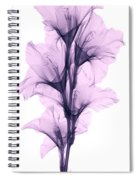 X-ray Of A Gladiola Flower Spiral Notebook