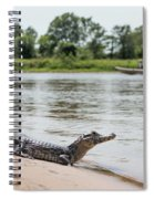 Yacare Caiman On Beach With Passing Boat Spiral Notebook