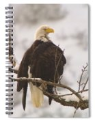 Yakama Canyon Eagle Spiral Notebook